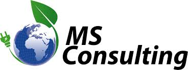 MS_Consulting