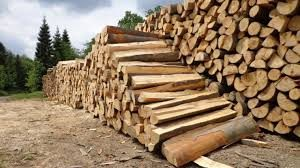 drewno-e1