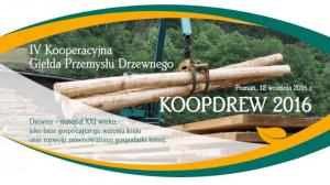 koopdrew-logo