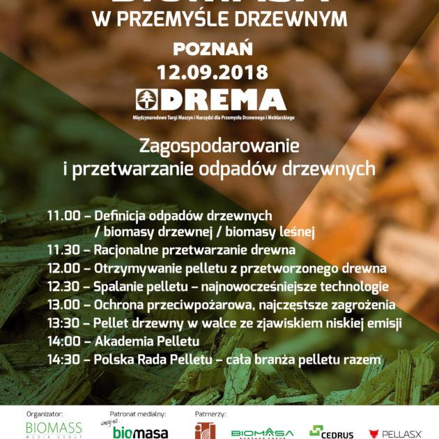 Biomasa w przemysle drzewnym_program